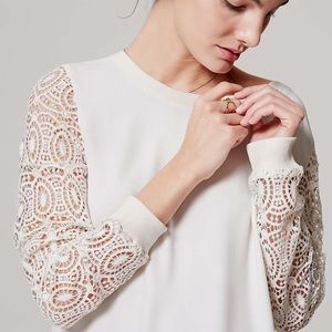 Ann Taylor Loft Ivory Blouse with Lace Sleeves